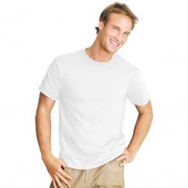 T.Shirt Plain White Choice of sizes to fit